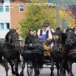 desmontegada predazzo 2017 ph teresa giacomelli36 150x150 Desmontegada 2017 Predazzo   Le foto della sfilata