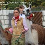 desmontegada predazzo 2017 ph teresa giacomelli57 150x150 Desmontegada 2017 Predazzo   Le foto della sfilata