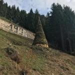 iscieri 2017 by Alan Morandini 150x150 Fuochi di San Martin 11 novembre 2017 a Predazzo
