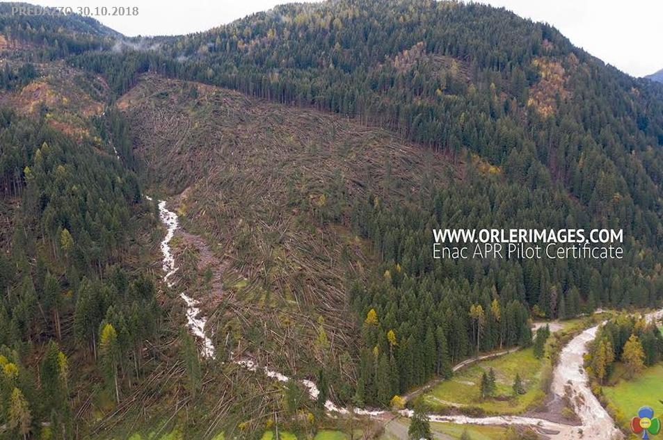 disastro bosco predazzo orler TEMPESTA VAIA trasforma i dintorni di Predazzo   le foto