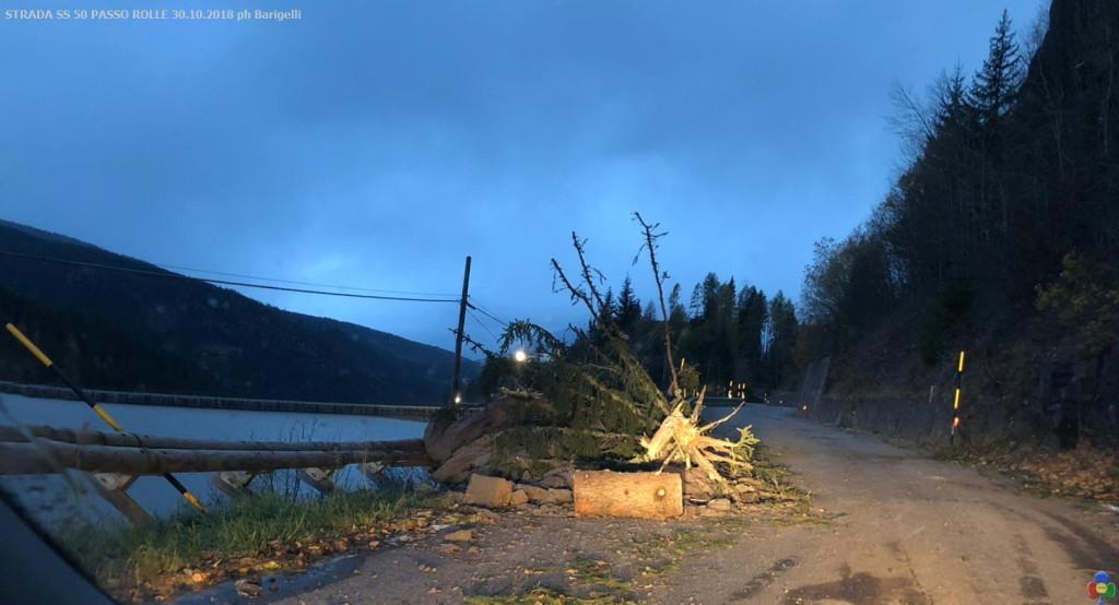 STRADA SS 50 PASSO ROLLE 30.10.2018 ph Barigelli4 1024x554 Paneveggio   Passo Rolle si contano i danni. Le foto