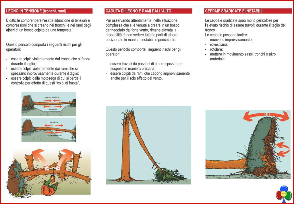 legno tensione pericolo 1024x710 Taglio del legname schiantato: un grave pericolo per gli operatori