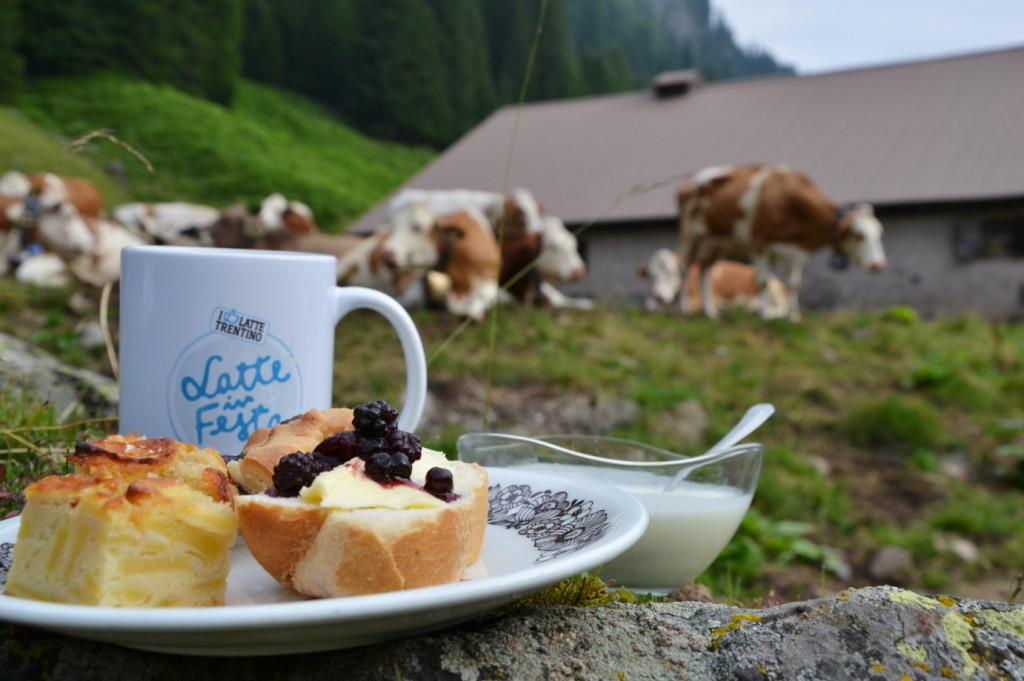 latte in festa 2019 1024x681 Val di Fiemme, Latte in Festa Sabato 31 agosto e domenica 1 settembre 2019