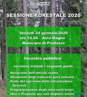 sessione forestale predazzo