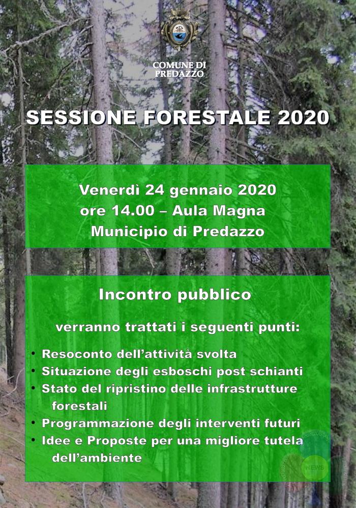 sessione forestale predazzo Sessione Forestale a Predazzo