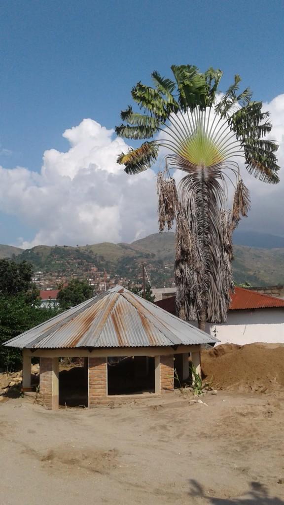f9c7cdba 7107 4ab0 9548 86fadb1dc0c5 576x1024 Il grazie di suor Delia dopo lalluvione di Uvira in Congo