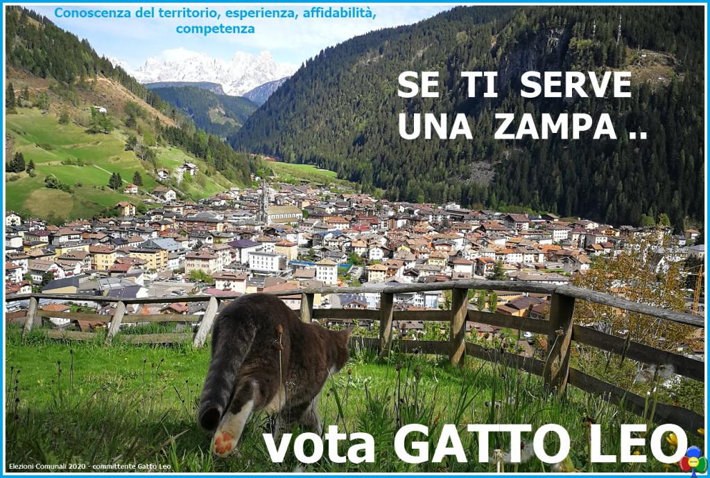 vota gatto leo 1024x690 Gatto Leo, candidato sindaco per i gatti di Predazzo